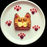 Berry Cat